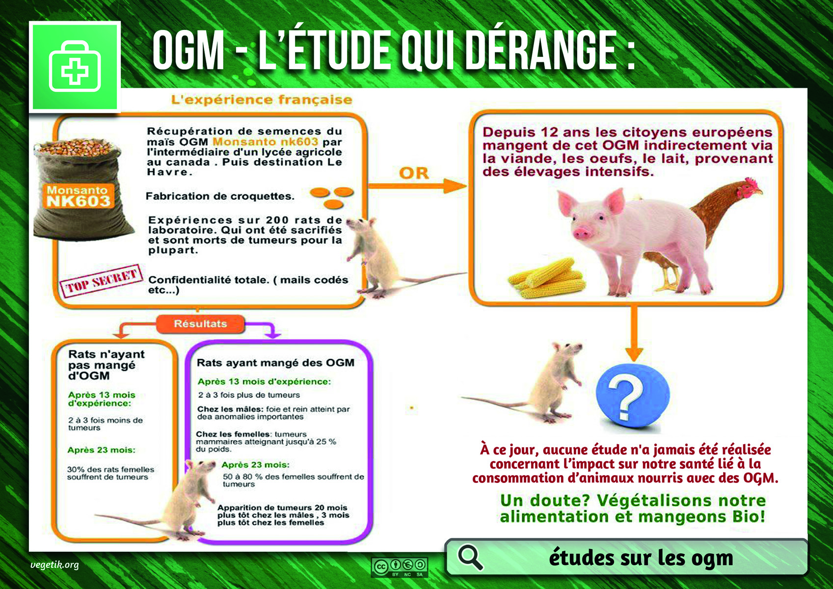 http://www.informaction.info/sites/default/files/images/sa5_-_etudes_sur_les_ogm.jpg